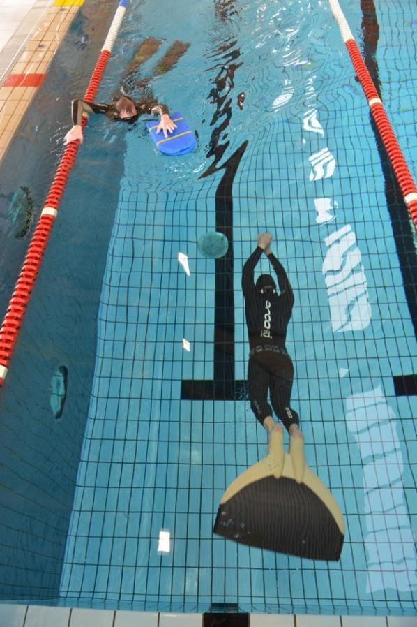 Ce dimanche comp tition d 39 apn e la piscine de mouscron for Piscine de mouscron